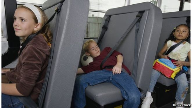 Should seat belts on school buses be required?